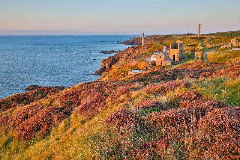 Levant Mine; Heather in Bloom; Cornwall; UK
