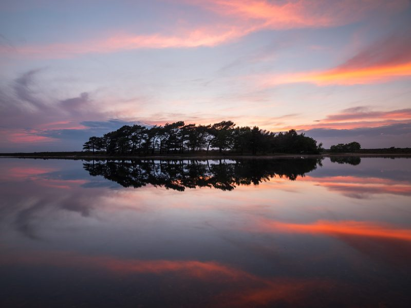 Hatchet Pond in the New Forest