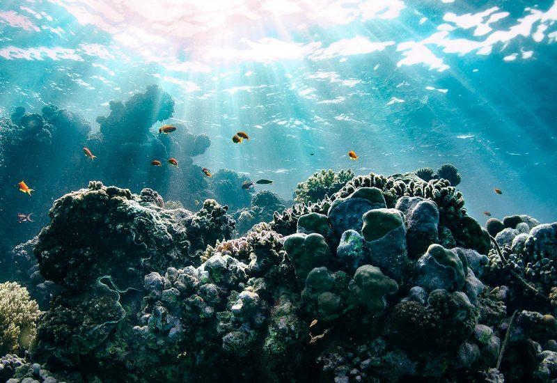 Underwater photo editing