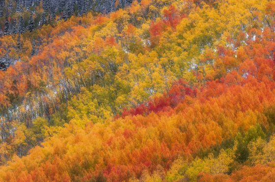 the-best-fall-landscape-locations-in-the-usa-8