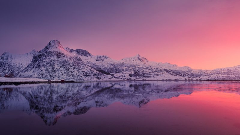 Pink and purple snowy landscape