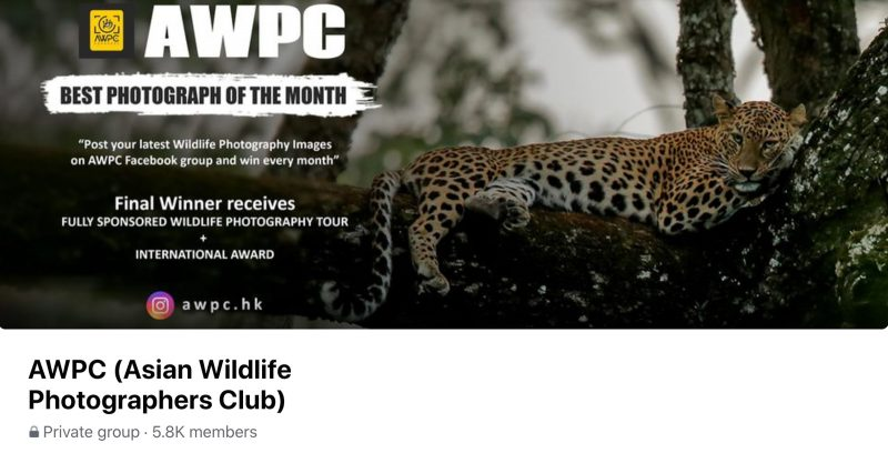 AWPC (Asian Wildlife Photographers Club)
