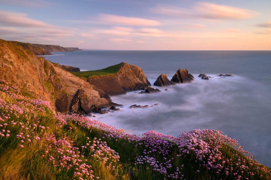 Devon Moors and Sea #1