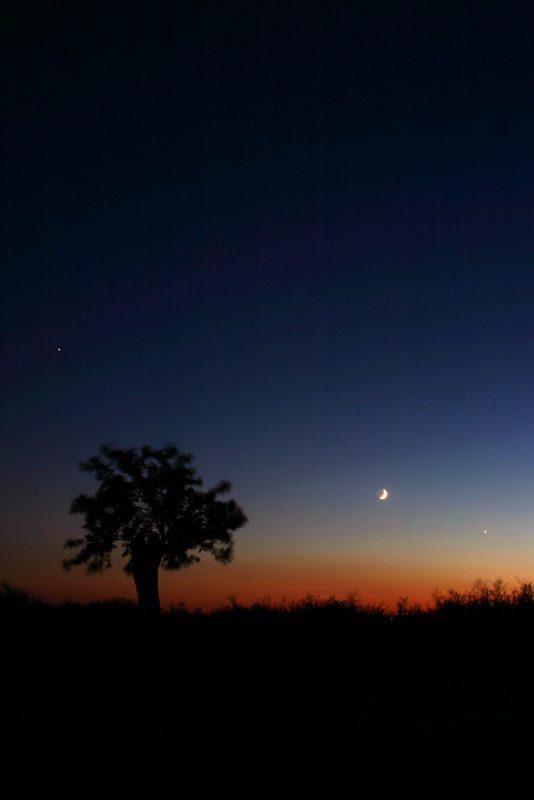 Night sky photo taken on a kit lens